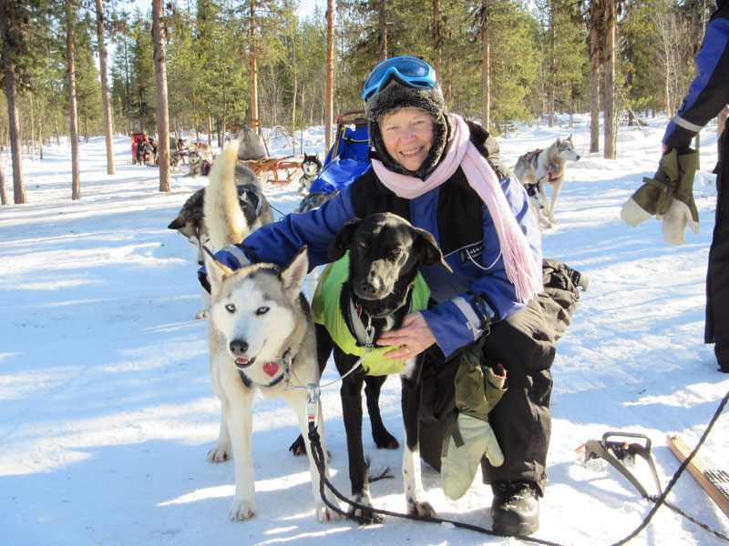 Discover Dog Sledding in Lapland (Sweden) mid-March
