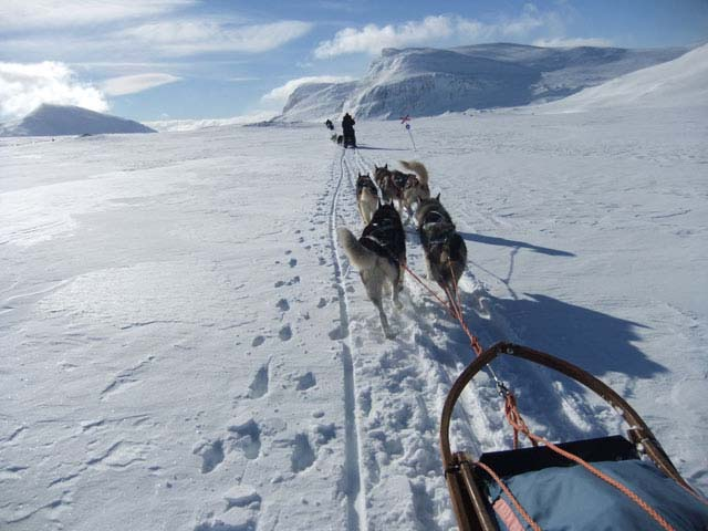 "The ""spring winter"" in March and April is the time for dogsled tours in the mountains."