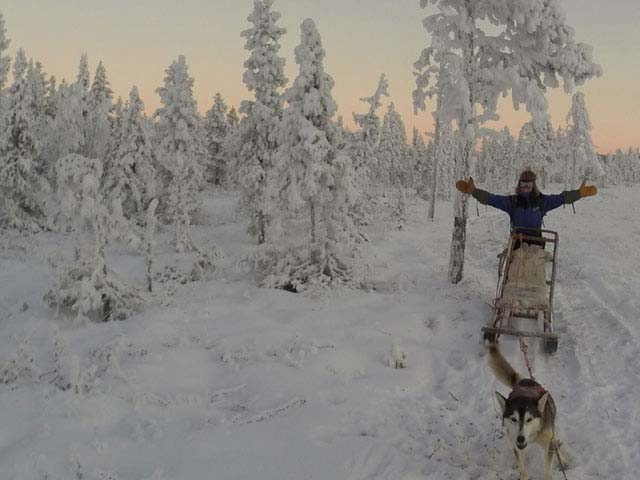 Dog sledding at any time of the winter season is fun!