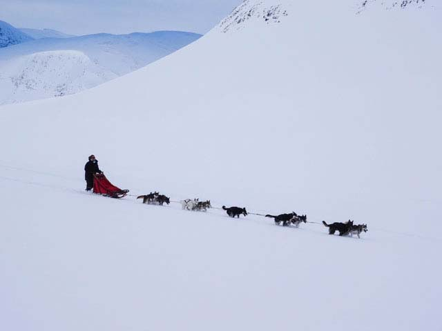 Mountain dog sledding offers a glorious combination of mushing adventure combined with dramatic scenery.