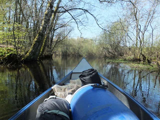 Lovely, calm river paddling.
