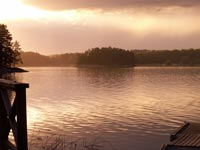How to arrange COVID testing for travel to Sweden. Photo: Nature Travels.