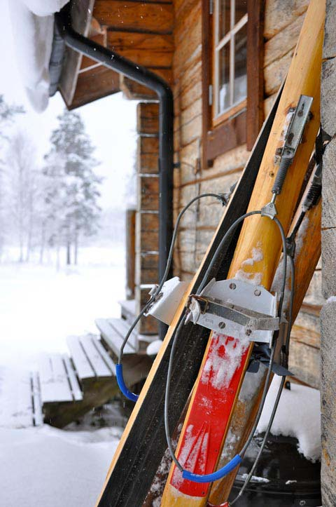 Forest skis.
