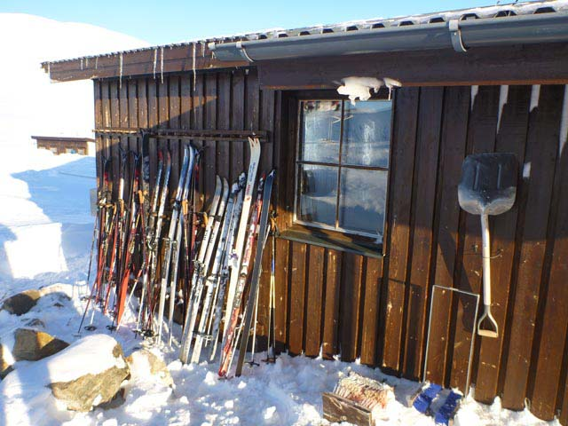 Skis for Nordic touring.