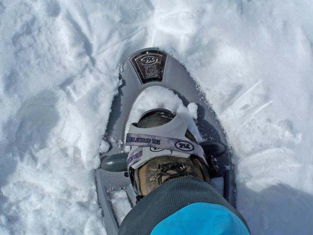 Snowshoes.