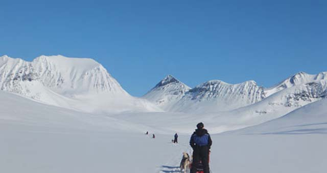Is this the most beautiful place to dogsled in the world? It certainly felt it today.