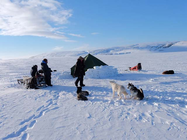 Winter camping adds an extra dimension to a dogsled tour, increasing the level of challenge.