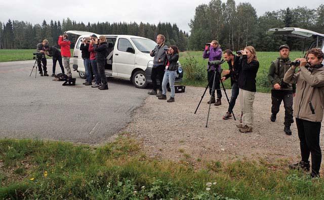 A pair of binoculars brings the moose even closer!