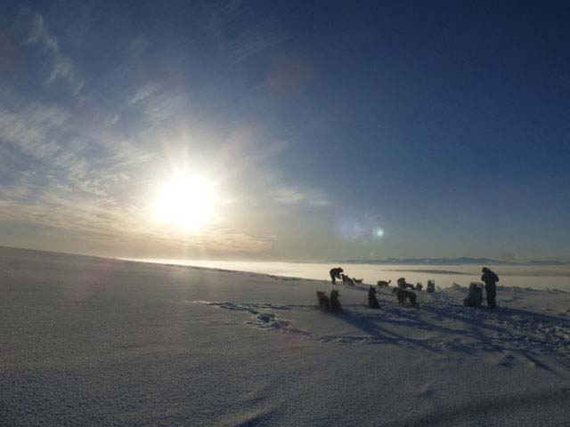 Dog Sledding and Northern Lights in Vindelfjallen.