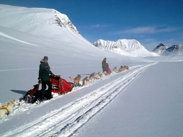 Dog Sledding and Winter Camping on the King's Trail.