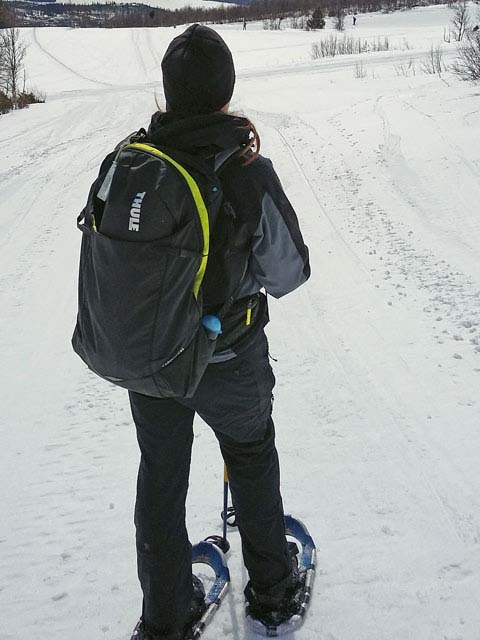 With its generous sizing, the Capstone makes a good winter daypack.