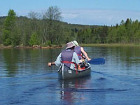 Canoeing in Bergslagen - Four Go Wild In The Woods. Photo: Bob Nature Travels.