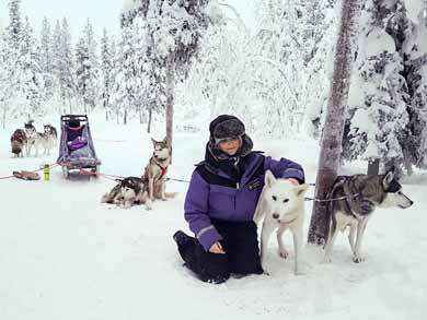 Inspiriation - Dog Sledding Kiruna and Abisko