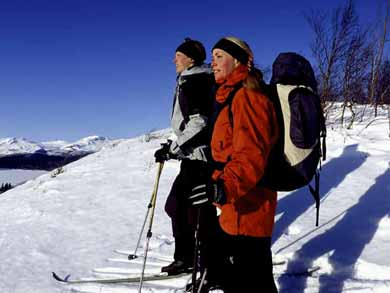Ski Touring on the King's Trail from Abisko to Kebnekaise