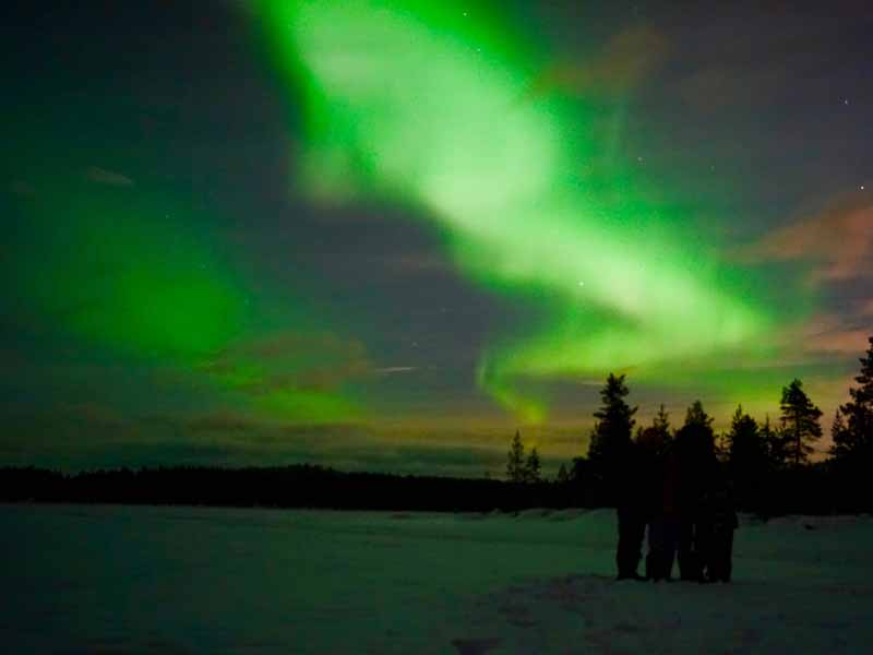 Northern Lights Dog Sledding in Lapland