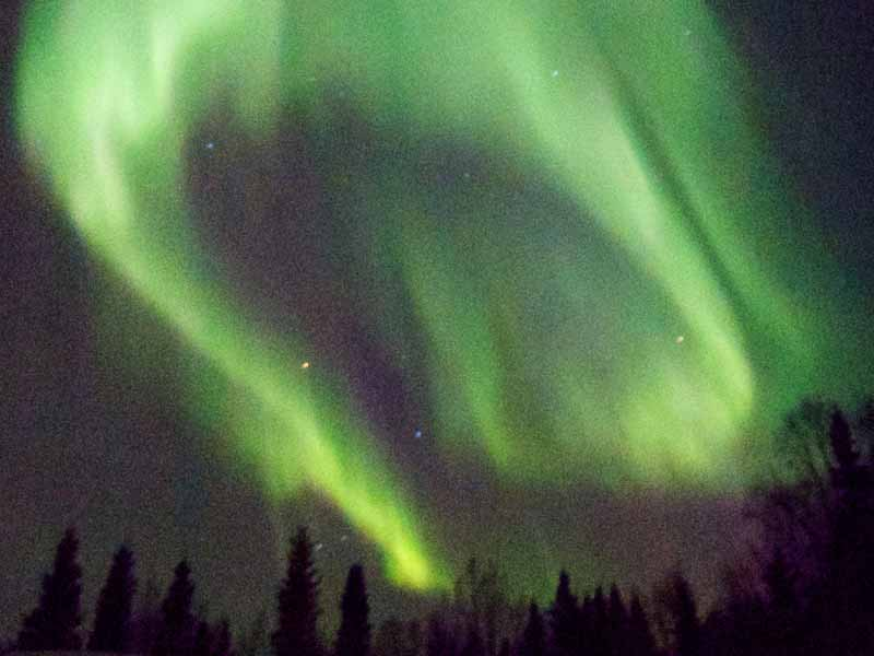 Many dogsled tours give very good chances to see the Northern Lights