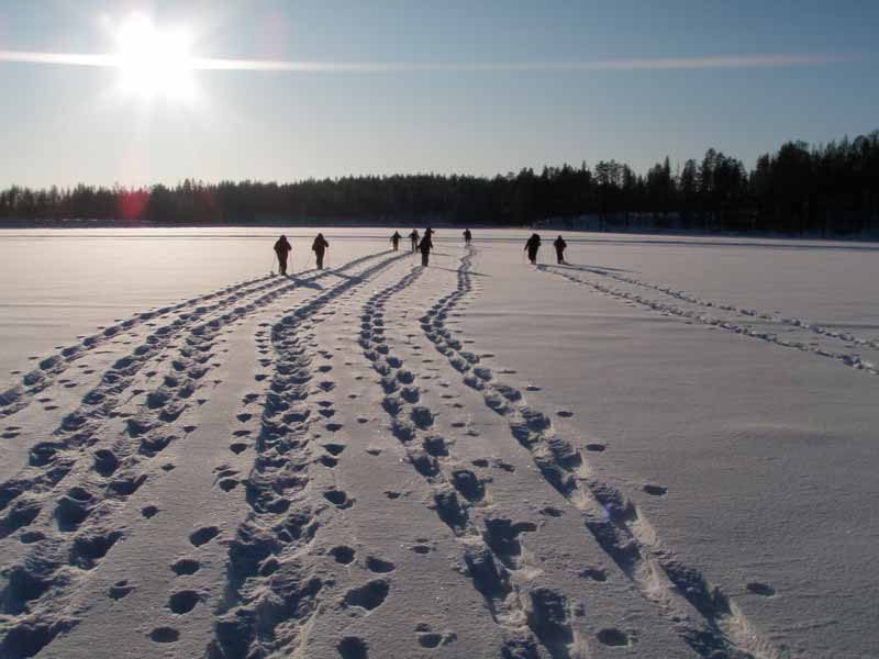 Snowshoeing in the Hossa National Park